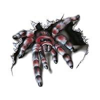 Sticker Spider 1 - 17x16cm