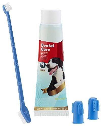 Sweetypet Zahnpflegeset für Hunde: 4in1-Zahnpflege-Set für Hunde mit Zahnpasta, Zahnbürste, Fingerbürsten (Zahnreinigungs-Set für Hunde)