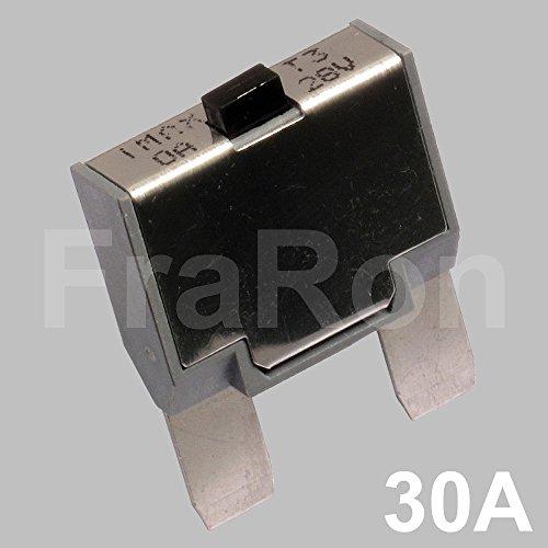 Sicherungsautomat 12/24 Volt 30 Ampere mit Reset-Funktion (Bus Sicherung 12v)