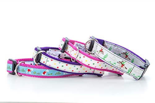 Pet Pooch Boutique Stanley Collar for Dog,