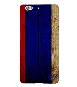 PrintVisa Painted Wooden Pattern 3D Hard Polycarbonate Designer Back Case Cover for Gionee S6