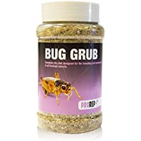 Pro Rep Live Food Bug Grub 300g Jar