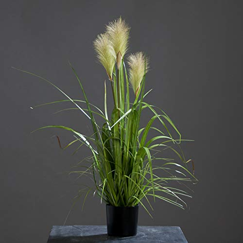 Kunstpflanze Riedgras Höhe: 80 cm Kunstgras
