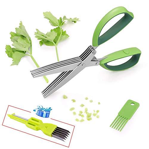 APERIL 5 Blade Herb Scissors Sh Cesoie da Cucina Multiuso con impugnature in Gomma Morbida per la Lavorazione di Erbe e Carta da Ufficio (Verde)