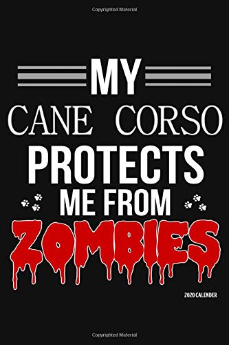 My Cane Corso Protects Me From Zombies 2020 Calender: Cane Corso 2020 Calender