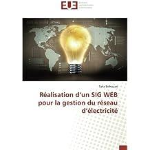 Réalisation d'un SIG WEB pour la gestion du réseau d'électricité