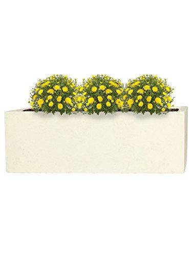 PFLANZWERK® Fioriera Vaso per fiori Portavaso Lana di vetro TUB Sabbia 17x50x17cm *Resistente al gelo* *Protezione UV* *Europea di qualità*