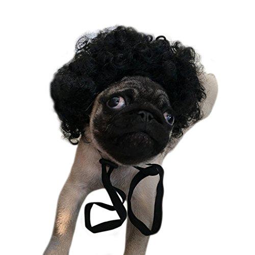 Hund Perücke, Legendog Hund Kostüm Haar Wild Curl Haar Lustige Braid Hund Kostüm Perücke Haustier Mähne für Party Kostüm (Wilden Und Verrückten Halloween Kostüm)