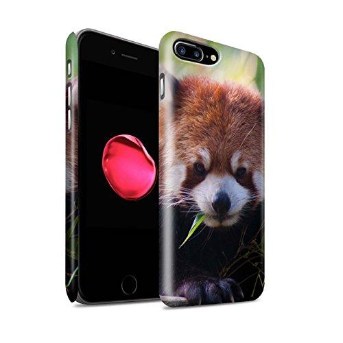 Clipser Matte Coque de Stuff4 / Coque pour Apple iPhone 7 Plus / Girafe Design / Animaux sauvages Collection Raton laveur