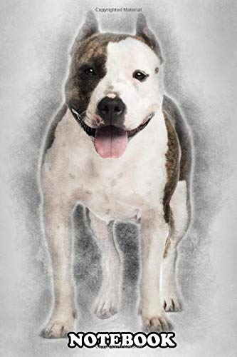 Notebook: Portrait Of American Staffordshire Terrier 3 Years Old , Journal for Writing, College Ruled Size 6″ x 9″, 110 Pages