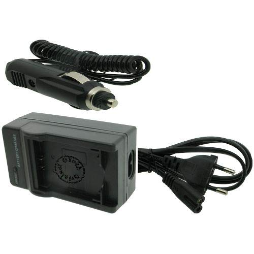 Otech Chargeur Compatible pour Sony FDR-AX33