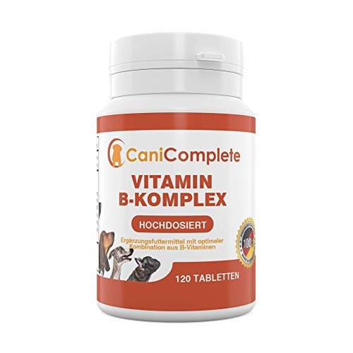 CaniComplete Vitamin B Complet pour Chien Chat : B1,...