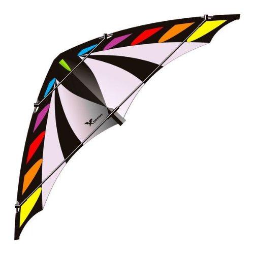 Elliot X-Dream, Zweileiner-Lenkdrachen, rainbow-schwarz-grau, rtf