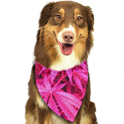 af Dog Bandanas - Washable and Reversible Triangle Cotton Dog Bibs Scarf Assortment Suitable for Puppy Small and Medium Pet ()