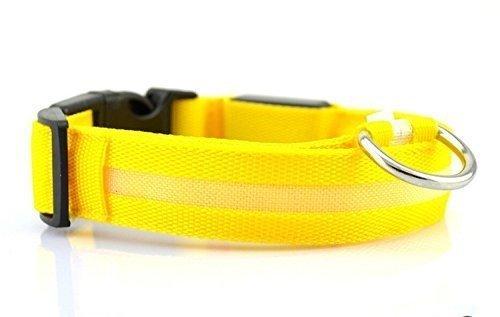 Collare luminoso per cani by DUCOMI (XL, Giallo)