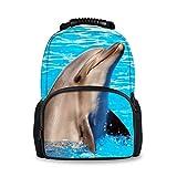 Lounayy Cat Kinderrucksack Studenten Kinderrucksack Lässig Backpack Backpack+Lunch Bag Schulrucksack Daypack Mode Rucksäcke Leicht Schule Daypack Schultasche Schulranzen Rucksack Ranzen