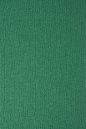 10 Blatt Grün Karton 215g beidseitig filzmarkiert mit Linienstruktur DIN A4 210x297 mm Nettuno Verde Foresta, ideal für Hochzeit, Geburtstag, Ostern, Weihnachten, Einladungen, Visitenkarten, Diplome