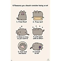 Póster Pusheen The Cat - 6 Reasons you Should Consider Being a Cat (61cm x 91,5cm) + 1 póster sorpresa de regalo