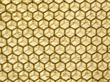 10 x Deep Foundation Unwired National Beehive Brood