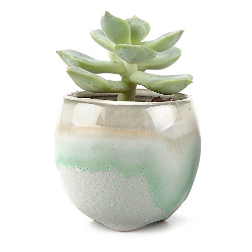 t4u-65cm-ceramic-flowing-glaze-solid-gray-base-serial-straight-mouth-shape-sucuulent-plant-pot-cactu