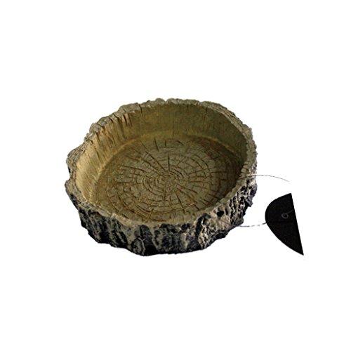 Generic Napf Futterschale Futternapf für Reptilien Vivarium Terrarium Schildkröte