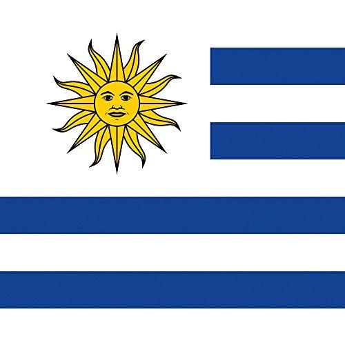 Apple iPhone 5s Housse Étui Protection Coque Uruguay Drapeau Ballon de football Sac Downflip noir