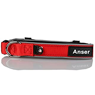 Anser D02 Pet Collars for Dogs Cat Collar 3M Reflective Nylon Neoprene Padded Dog Collar (L:3/4