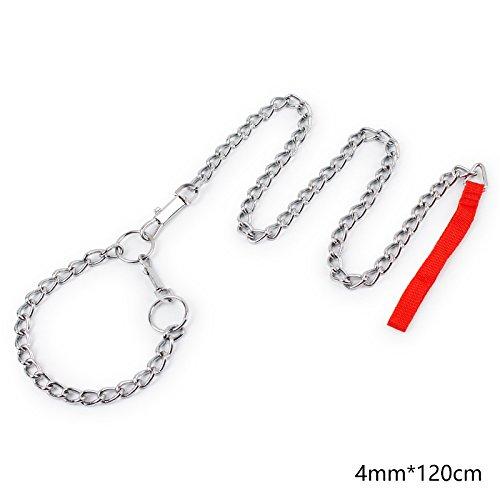 Hund Stahl Kette Leine mit Halsband Nylon Griff–Basic Training Leine Heavy Duty Metall Kette führt für kleine medium Große Hunde (Leinen Nylon-griff)