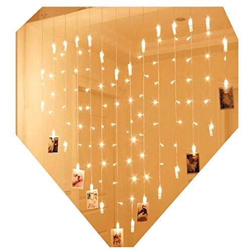 Lalia LED Lichterkette zum Aufhängen von Fotos, Bildern Notizen Herz Herzform Steckdose Warmes Weiß 1,5x1,5 Meter, Fotogirlande, Wanddekoration, Hochzeit, Party, Valentinstag, Lichterkettenvorhang -
