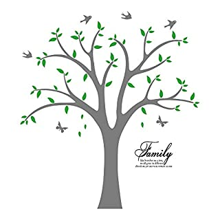 Family Photo Tree Wall Decal Stickers Living Room Home Decal Bed Baby Room Wall Decals, Memory Tree and Birds, Wall Stickers,Butterfly (Green+Grey)
