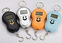 Portable Electronic Pocket Luggage Scale