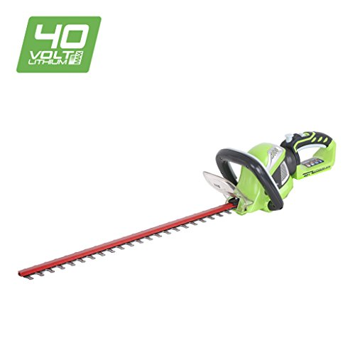 Greenworks Tools 22637T - Cortasetos 40V, color: verde