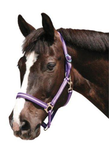 Stivali Da Equitazione Kerbl Ippopotamo Marino / Celeste