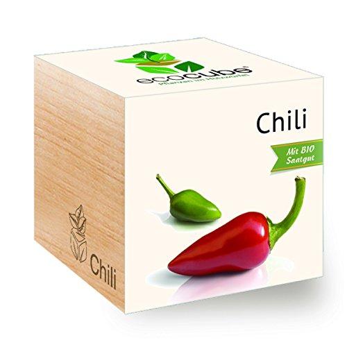 Chili im Holzwürfel
