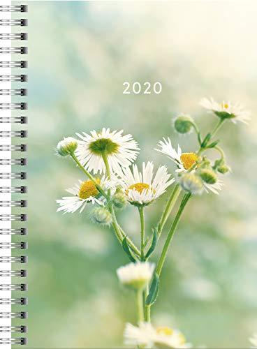 rido/idé 702180702 Buchkalender Timing 1 (2 Seiten = 1 Woche, 148 x 210 mm, Grafik-Einband Fiori, Kalendarium 2020) -