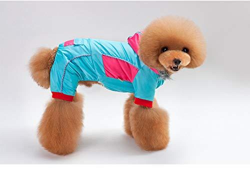 PZSSXDZW Cappotto in Cotone con Cappuccio Colorblock Vestiti per Cani da Compagnia Abbigliamento Invernale per Animali Domestici Cane Quattro Piedi Cappotto Caldo di Cotone Blue Small
