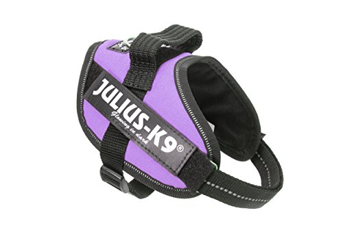 Julius-K9 - Best French Bulldog Harness Collection