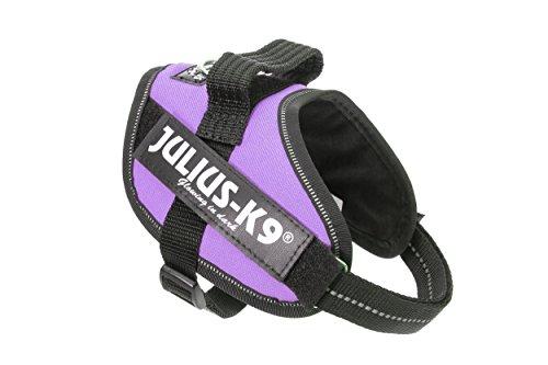 Julius-K9 16IDC-PR-MM IDC Powerharness, Dog Harness, Size Mini-Mini, Purple