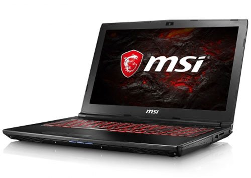 MSI GL72 7RDX-446 Notebook