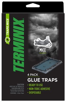 ap-g-co-inc-terminix-mouse-gluetrap