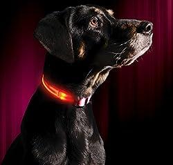 Illumiseen Led-hundehalsband In 6 Größen 6 Farben - Größe Xxs Pink