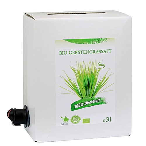 GutFood - 3 Liter Bio Gerstengrassaft - Bio Gerstengras Saft in praktischer Bag in Box Packung ( 1 x 3 l Saftbox ) - 3 Monatsvorrat