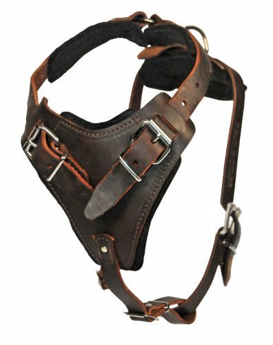 dean-and-tyler-the-boss-nickel-belt-style-buckles-dog-harness-with-handle-brown-medium-fits-girth-si