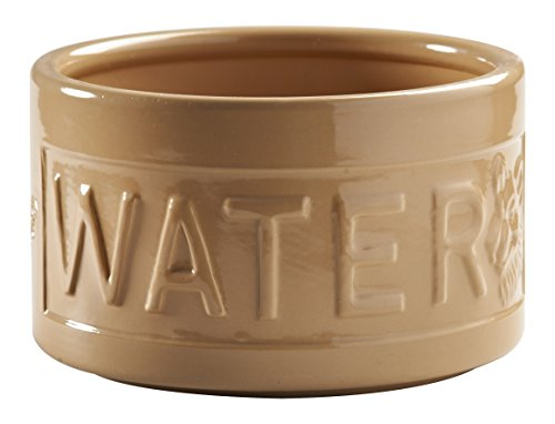 mason-cash-cane-ceramic-dog-bowl-deep-water-6-wide