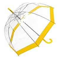 Clear Dome Umbrella with Coloured Trim