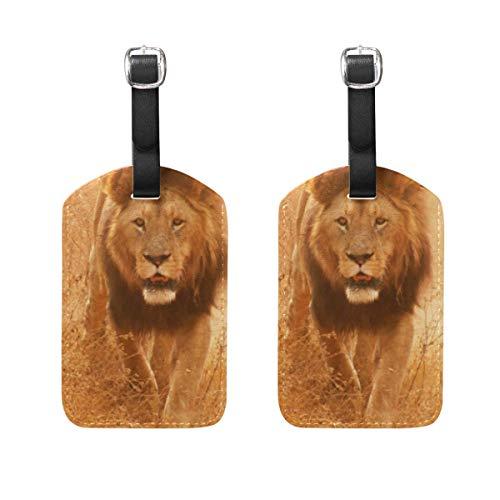 Luggage Tags Animal Lion Travel ID Bag Suitcase Duffel Backpacks Handbag Tags 2 Pack 00df7398