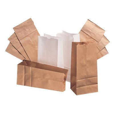 4-paper-bag-in-white-by-sams-club