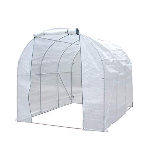 Tomaten tomatenhaus Portable Walk in Greenhouse - Pflanze wachsen Zelte Stahlrahmen Garten Hinterhof...