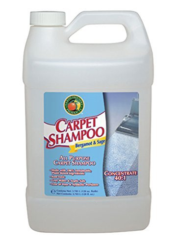 earth-friendly-carpet-cleaner-bottle-128-oz-by-earth-friendly-products
