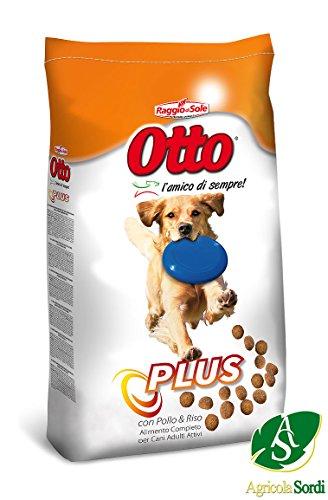 Radius der Sonne Croccantini acht Plus 20kg orange Futter komplett Lebensmittel für Hunde Erwachsene für alle Rassen
